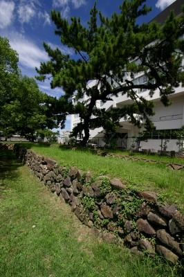 福岡景観ガイドツアー【11月西新エリア】